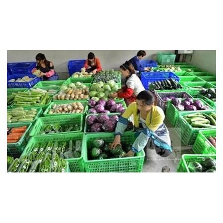 蔬菜配送价格