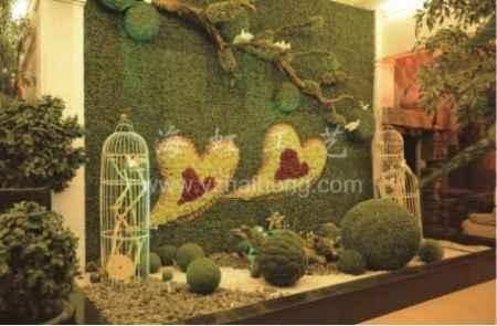 上海假植物墙价格