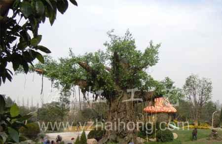 人造古榕树规划